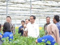 Endonezya Başbakanı Joko Widodo
